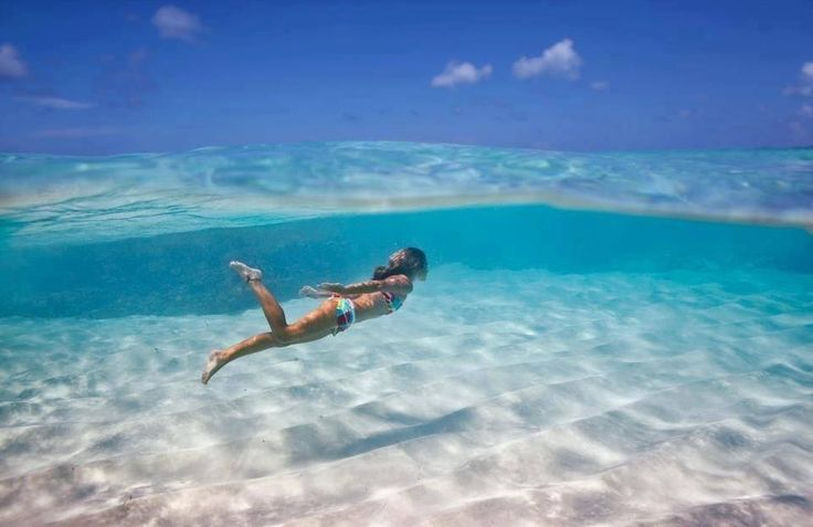 The Blue Mind: How the South Florida Salt Life is Making You Healthier!