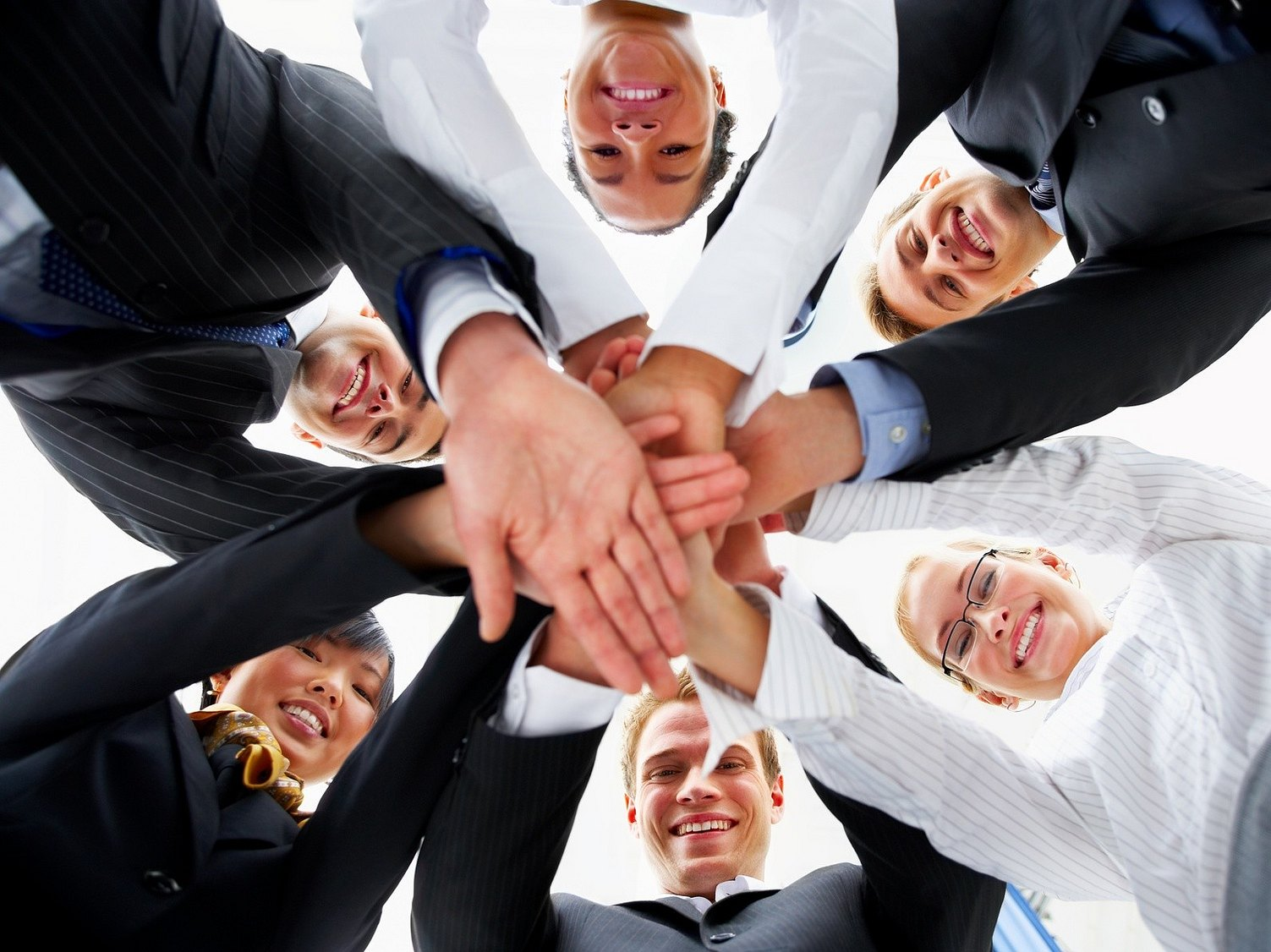 a discussion on a successful team within an organisation Team members can also be expected to demonstrate two types of loyalty and identification: (1) loyalty to other team members and identification with the group for effective group interaction and (2) loyalty to the organization and identification with organizational objectives for effective task accomplishment.