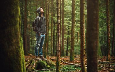 Nature can boost your mental health during COVID-19